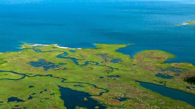 Chesapeake By Aerial